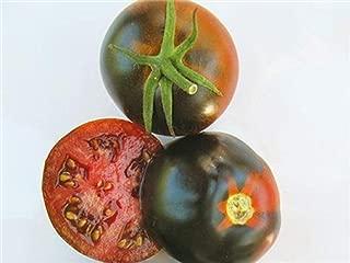 50 Seeds Chestnut Chocolate Very Dark Tomato Vegetables Garden tkpn