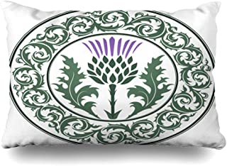 Ahawoso Decorative Throw Pillow Cover Queen 20x30 Green Curl Scottish Thistle Flower Round Leaf Nature Purple Scotland Heraldic Pattern British Celtic Zippered Pillowcase Home Decor Cushion Case