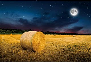CSFOTO Autumn Backdrop 6x4ft Farm Rural Village Background for Photography Countryside Theme Party Decor Harvest Straw Rolls Haystack Hay Bale Night Starry Sky Full Moon Polyester Wallpaper