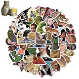 WOCOCO Meme Stickers, Vine Stickers, Funny Vinyl Stickers for Hydro Flask Laptop Water Bottle, Waterproof, Sun Protection, No Residue Removal, Suitable as a Beautiful Gift (50 pcs)
