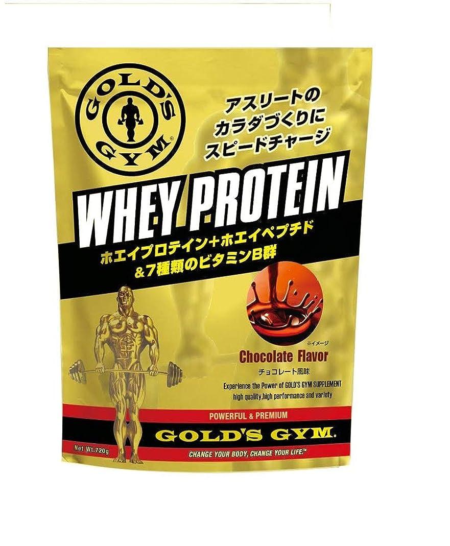 下手アスペクトあなたはゴールドジム(GOLD'S GYM) ホエイプロテイン チョコレート風味 360g
