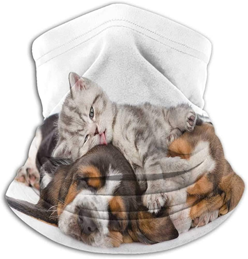 Face Scarf Mask Women Funny Winter Neck Gaiter Newborn Kitten Lying on the Puppies Basset Hound and Licks Sleeping Cuddle Picture Multicolor