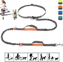 Best stretching lead came by hand Reviews