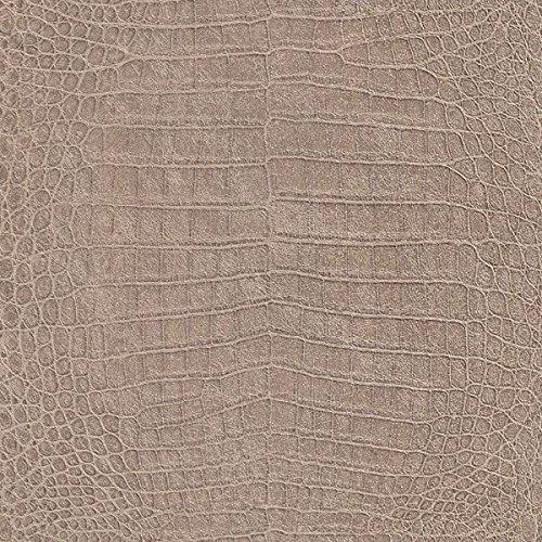 African Queen Wallpaper Collection 474138