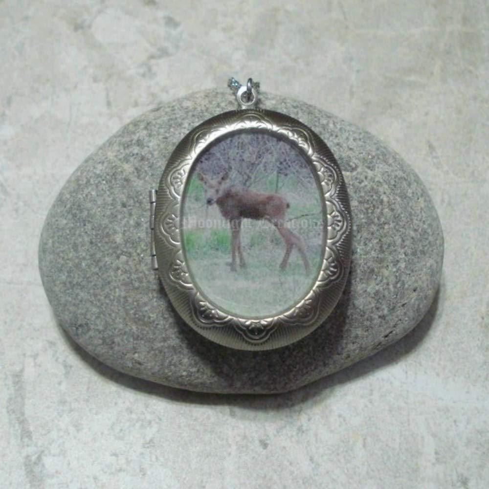Baby Moose Locket Mesa Mall Pendant Max 51% OFF Necklace Steel Stainless