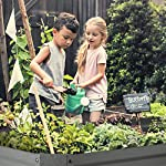 Blumfeldt nova high grow garden bed: raised growing bed, material: wpc with uv, rust and frost protection, wood look… 17 weatherproof: sturdy frame construction lets this garden weather any storm. The bed is made of steel corrugated iron and is protected against weather with a special 120 g / m² zinc-aluminium weather-shield-coating. Fast installation: the installation of the blumfeldt raised bed is straightforward and fast. Versatile: tasty, fresh and local: with this raised garden bed you can grow a variety of fruits and vegetables.
