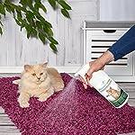 Produit Nettoyant et Eliminateur d'odeur Bio pour Chats Ecosharkz Animal - Spray désodorisant anti urine pour intérieurs avec chat et litière - Concentré de 500ml - jusqu'à 25L de solution nettoyante #1