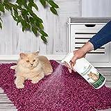Geruchsneutralisierer Spray für Katzen – natürlicher Katzenurin Entferner – gegen Katzenklo Geruch - 4