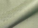 Tela para muebles ignífuga SAO PAULO FR, patrón abstracto verde como tela de tapicería robusta, tela de tapicería estampada para coser y colocar, poliéster FR