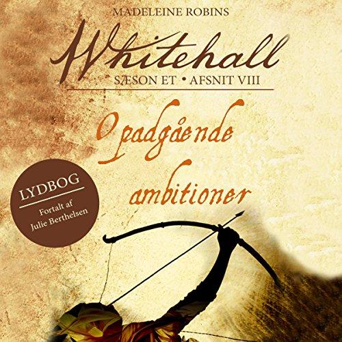 Opadgående ambitioner audiobook cover art