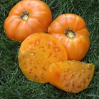 David's Garden Seeds Tomato Beefsteak Amana Orange SL8446 (Orange) 50 Non-GMO, Heirloom Seeds