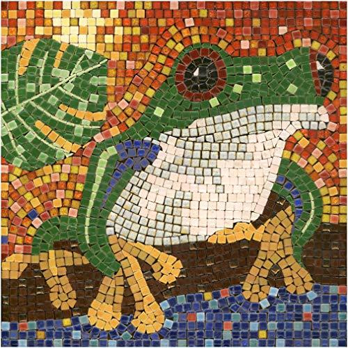 kit mosaico DIY manualidades, 20x20cm Rana