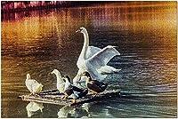 HD White Swan Family&Pond at Sunset 9007535(52*38CMプレミアム500ピースジグソーパズルアメリカ製!)