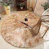 Tany Runde Steigung Farbe Weich Longhair Teppiche,Kunstwoll Plüschteppich,Flauschig Weiche,Geeignet für Wohnzimmer Schlafzimmer Arbeitszimmer Couchtisch.(160 * 160cm),LightGray