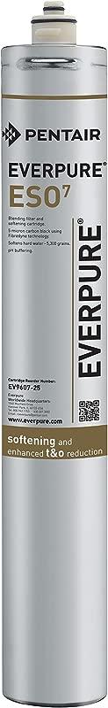 Everpure EV9607 25 ESO 7 Cartridge