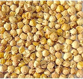 Buycrafty Paneer Dodi | Indian Rennet | Paneer Doda | Withania coagulans, Diabetic herb 1000g