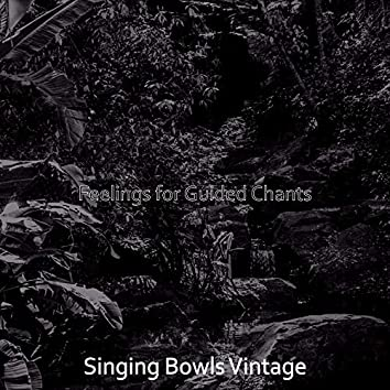 Feelings for Guided Chants
