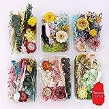 Gobesty Aplique de uñas 3D, flores secas de uñas reales, mini flores secas de uñas