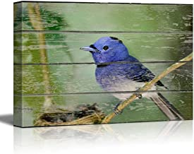 wall26 - Canvas Wall Art - Blue Little Bird Sitting on a Tree Branch on Vintage Wood Textured Background - Rustic Country Style Modern Giclee Print Gallery Wrap Home Decor Ready to Hang - 12