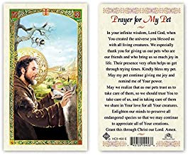 St. Francis Prayer for My Pet Paper Prayer Cards - Pack of 100 - HC9-450E-L