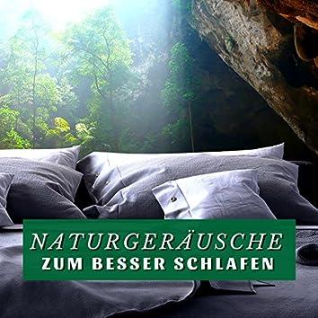 Naturgeräusche zum Besser Schlafen: Beruhigende Lieder zum Schnell Einschlafen und Klares Träumen