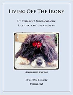 Living Off The Irony: My Turbulent Autobiography: Stuff You Can't Even Make Up (Living Off The Irony Book 1)