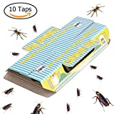 New Trapro Cockroach Trap