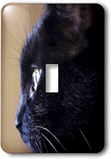 """3dRose lsp_49295_1""""Extreme Closeup Of Black Cat Toggle Switch"""