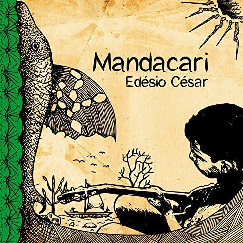 Edésio Cesar