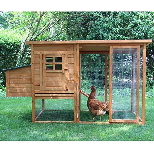 zoo-xxl Poulailler Elise Grand Confort avec pondoir en...