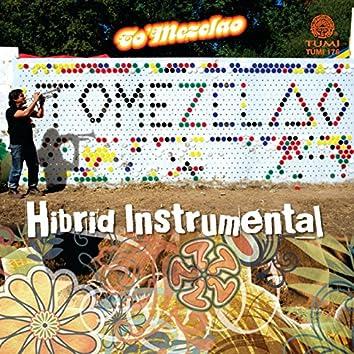 Hibrid Instrumental