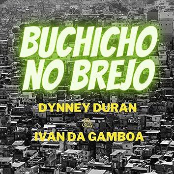 Buchicho no Brejo