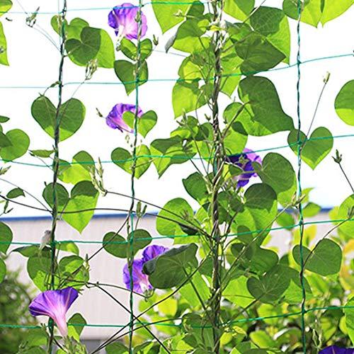Liyeehao Red Grande para trepar Plantas, Red para trepar Plantas, Malla de Soporte para Plantas, Soporte para Plantas, Vid para Pepino, Vid, jardín(#3)