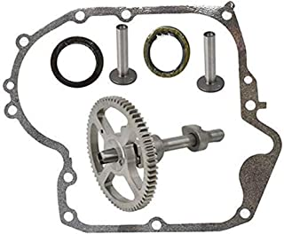 Best replacing camshaft on briggs and stratton Reviews