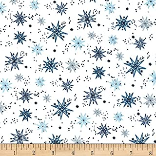 Michael Miller Minky Sassy Cats Starship Fabric by The Yard, Blue