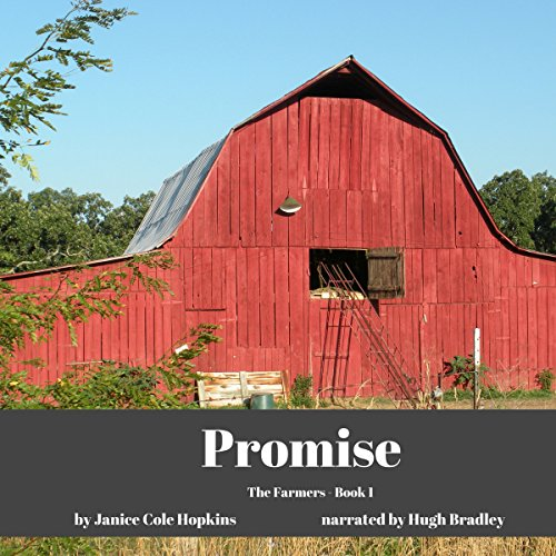 Promise audiobook cover art