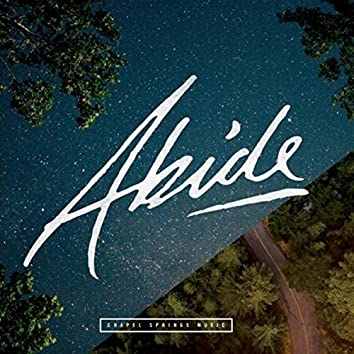The Abide Project