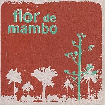 Flor de Mambo