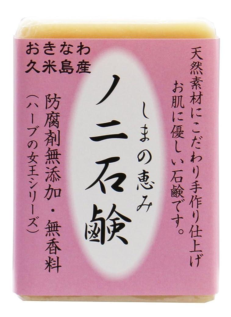 フィクショントン西島の恵み ノニ石鹸 100g 沖縄県久米島産ノニ使用