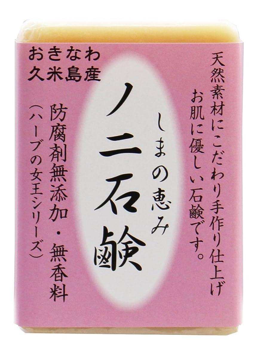 サイトチャンピオンシップ冒険家島の恵み ノニ石鹸 100g 沖縄県久米島産ノニ使用