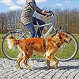 Trixie 1282 Fahrrad- und Joggingleine, 1,00-2,00 m/25 mm, schwarz - 2