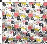 Schwarz, Katze, Kätzchen, Katzenhaft, Rosa, Rot, Blau