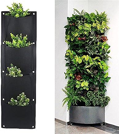 Amazon.it: vaso porta erbe aromatiche: Casa e cucina