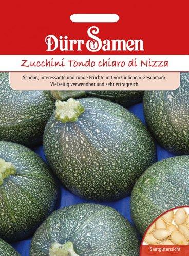 Dürr-Samen Zucchini Tondo chiaro di Nizza