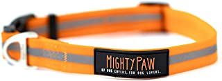 Mighty Paw Waterproof Dog Collar, Smell-Proof Active Dog Gear, Coated Nylon Webbing with Reflective Stripe.