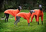 Jersey para galgo de marca Dog and Home