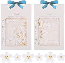 Lurrose 2 Sacos Flor Encantos Da Arte Do Prego 3D Prego Resina Flor Branca Prego Decorações Ornamentos Acessórios Do Prego...