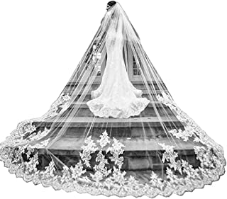 Cathedral Veils for Brides Wedding 5 Meters 2T Lace Appliques Blusher Veil with Comb - coolthings.us