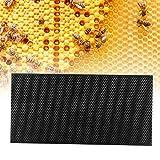 Emoshayoga Artículo ecológico plástico de la fundación del Peine de la Herramienta de la Apicultura para el Uso de la Apicultura(Black)