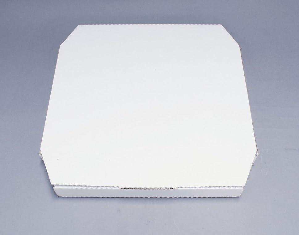 試験算術れんがピザボックス 白(100枚入) 187116 10インチ